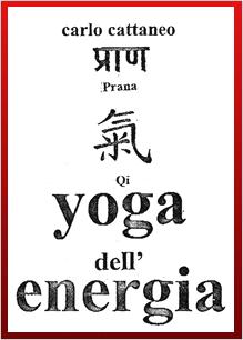 carlo cattaneo insegna yoga dell'energia  yoga